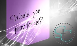 A Christian blog for women is reaching out for prayer partners? Will you pray for our e-ministry?   Satisfaction Through Christ