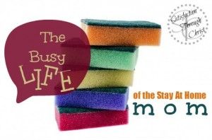 The Busy Life of a Stay At Home Mom: Thoughts on SAHM, WAHM and the career mom from Kelly. | Satisfaction Through Christ