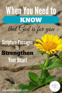 Feeling alone or doubting your place or ability,? You need to know that God is for you. Encourage your heart with these Scripture meditations.